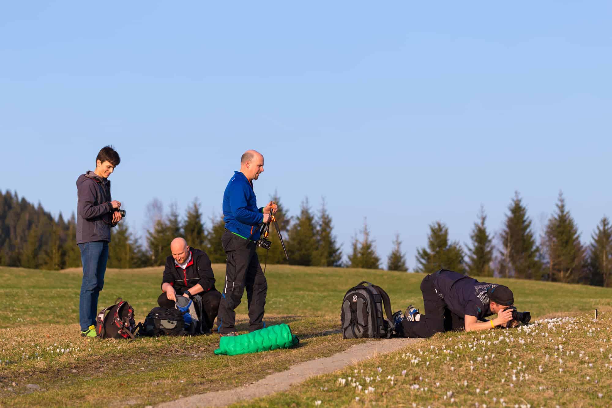 Fotografen auf der Krokuswiese Gerold