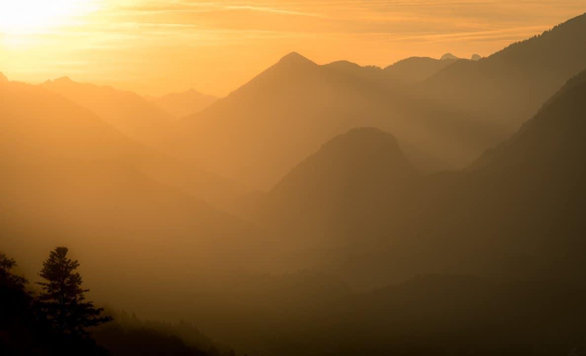 Wamberg Gold Mountains