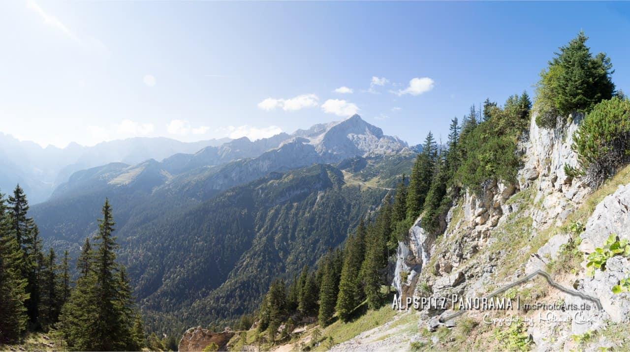 Das Bergschaf am Kreuzjoch